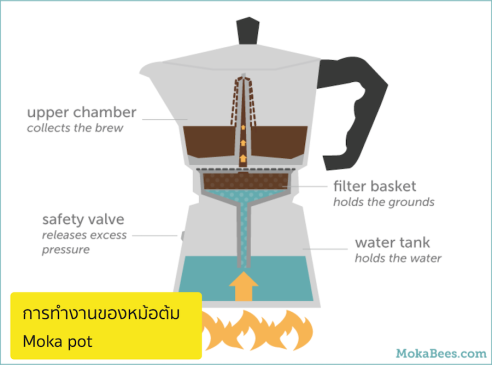 หลัการทำงานหม้อต้มกาแฟ moka pot
